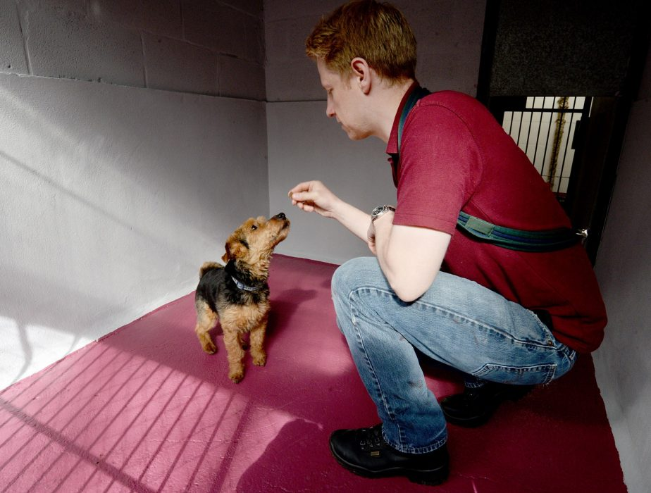 Hope Rescue opens new dedicated rescue centre